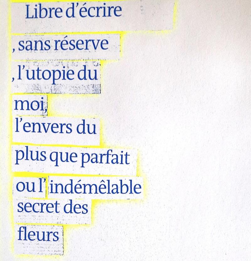 monsieur-fils_txt-8_mini.jpg