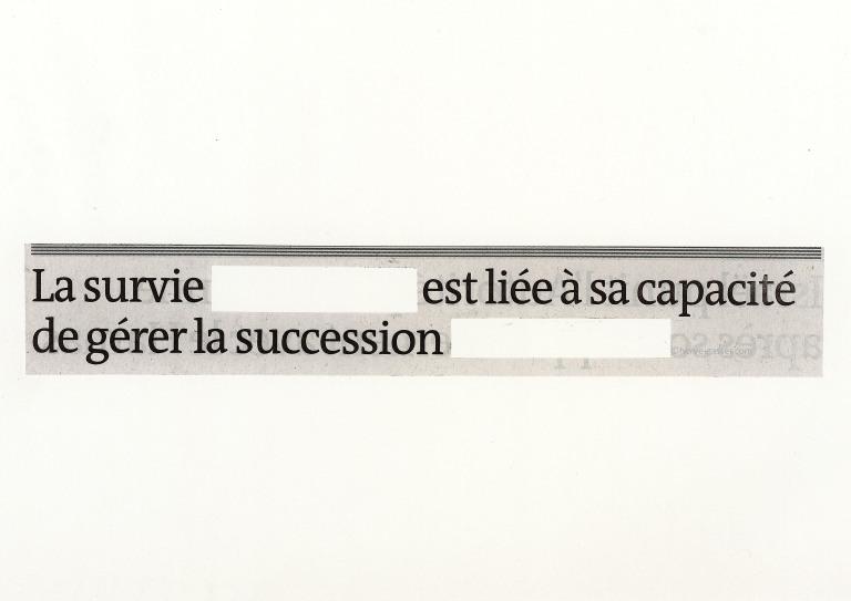 Survie succession