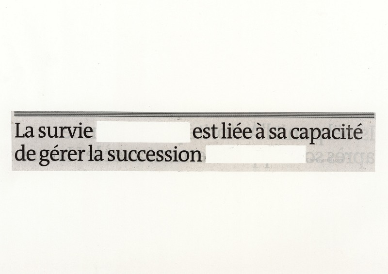 Survie succession